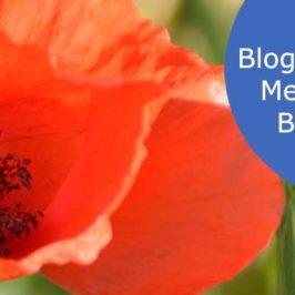 Blogentwicklung – Mein jetziger Blogstatus