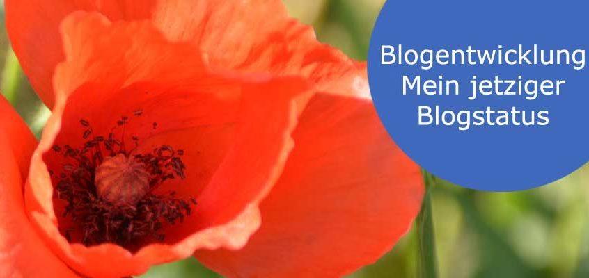 Blogentwicklung