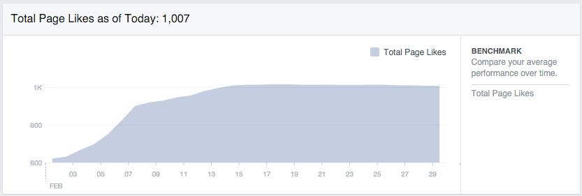 Facebookentwicklung