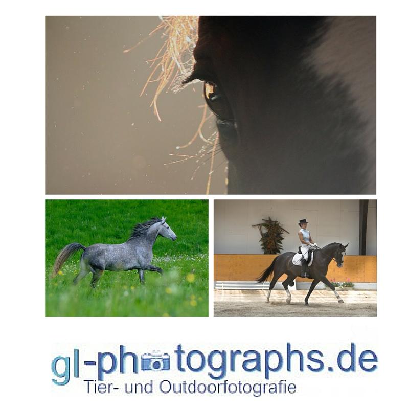 gl-photographs.de